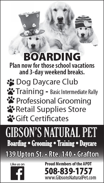 Gibson Kennels