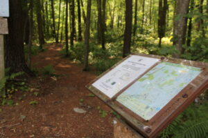 Trails run through the Mt. Pisgah Conservation Area, near where Northborough is considering conserving a new plot of land.