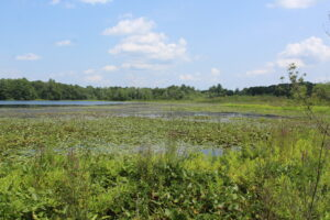 The homes would be on the edge of Bartlett Pond in Northborough.