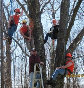 Steve Stratton, top right, owner of Templeman Tree Service, and his crew, top left to right, Nick Misiaszek and Brandon Cranton, and, bottom left to right, Erik Ronnquist and John Williford.  Contributed photo. Photo/Nancy Brumback