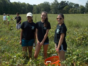 (l to r) Senior helpers Apoorva Indraghanty, Ashley Kim and Alyson Rivers