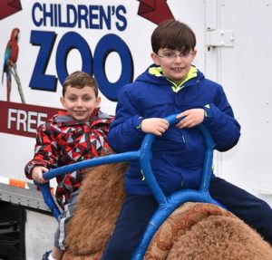 """The Costello brothers – Daemon, 7, and Thomas, 9 – ride on a live camel at the petting zoo """"Polar Stop"""" on Worcester Street."""