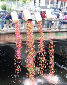 Members of the Hudson Rotary Club dump 2,952 numbered rubber ducks from the Washington Street Bridge into the Assabet River. Ducks floated to the finish line at the Broad Street Bridge.