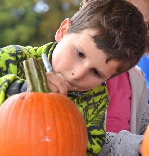 Pumpkins return to Hudson Recreation's 19th fall festival