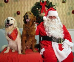 The fundraiser will benefit Baypath Humane Society of Hopkinton, Inc. Photo/submitted
