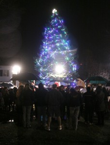 The tree at Union Common in Marlborough, shortly after being lit during the celebration.
