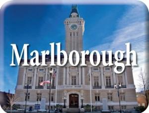 Marlborough large web icon