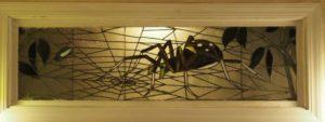 Spider and Fly Window. (Photo/Geoff Wilson)