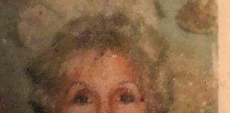 Dorothy F. Cellucci