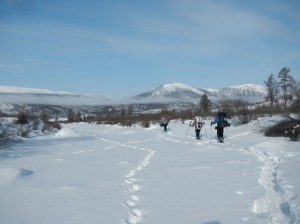 Expedition members ski down a drainage in the Sayan Mountains of northern Mongolia, with wolverine tracks to the left.
