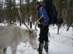 Wolverine biologist Jason Wilmot encounters a domestic reindeer left for the winter in a high mountain pasture in northern Mongolia.