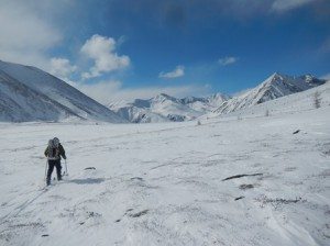 Expedition member Forrest McCarthy skis across a pass in northern Mongolia where snow leopard tracks were detected.