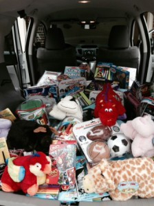Some of the toys donated by a local family  Photo/submitted