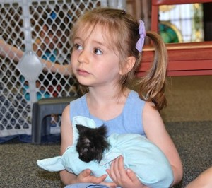 Zoe Welland, 3, takes her turn holding a kitten.