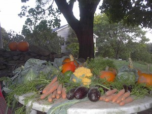 A sampling of the produce from the Hooks community garden (Photo/submitted)