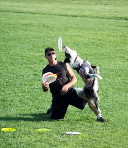 Mike Piazza and his High Flying Frisbee Dogs performed a free show at Oak Middle School. Despite a mid-show injury, Piazza had his border collies doing backflips for Frisbees, wowing the audience.