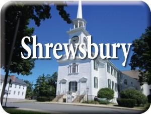 Shrewsbury large web icon