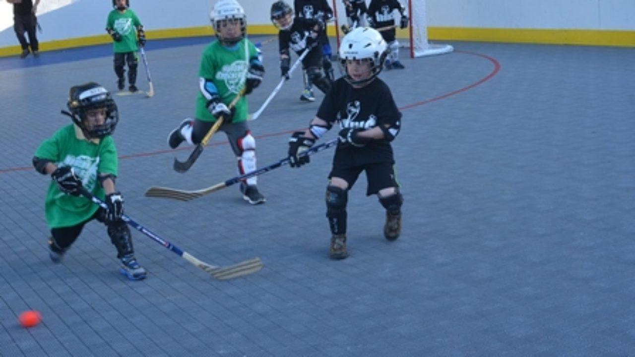 Dek hockey fun in Hudson - Community Advocate