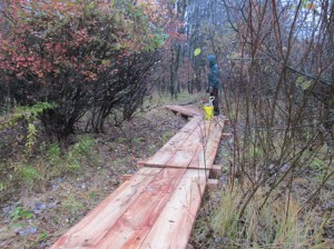 A new bog bridge constructed during Shawn McElligot's Eagle Scout project.